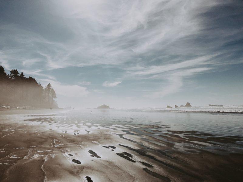 RUBY BEACH / kirsten zellers
